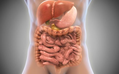 Bowel Rest Not Seen to Benefit NHL Patients with Gastrointestinal Involvement in Study