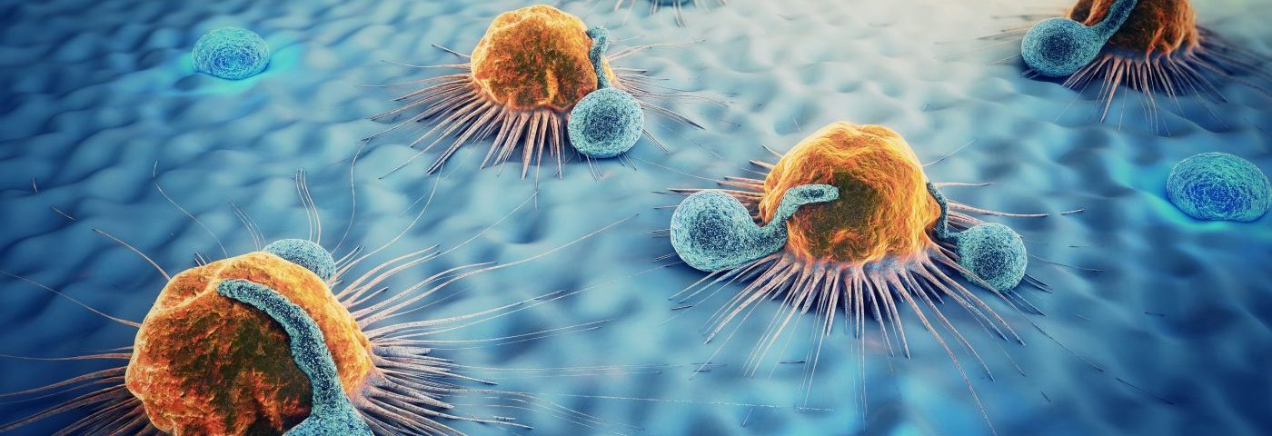 Variety of T-cells Linked to Better Survival in Non-Hodgkin's Lymphoma, Study Shows
