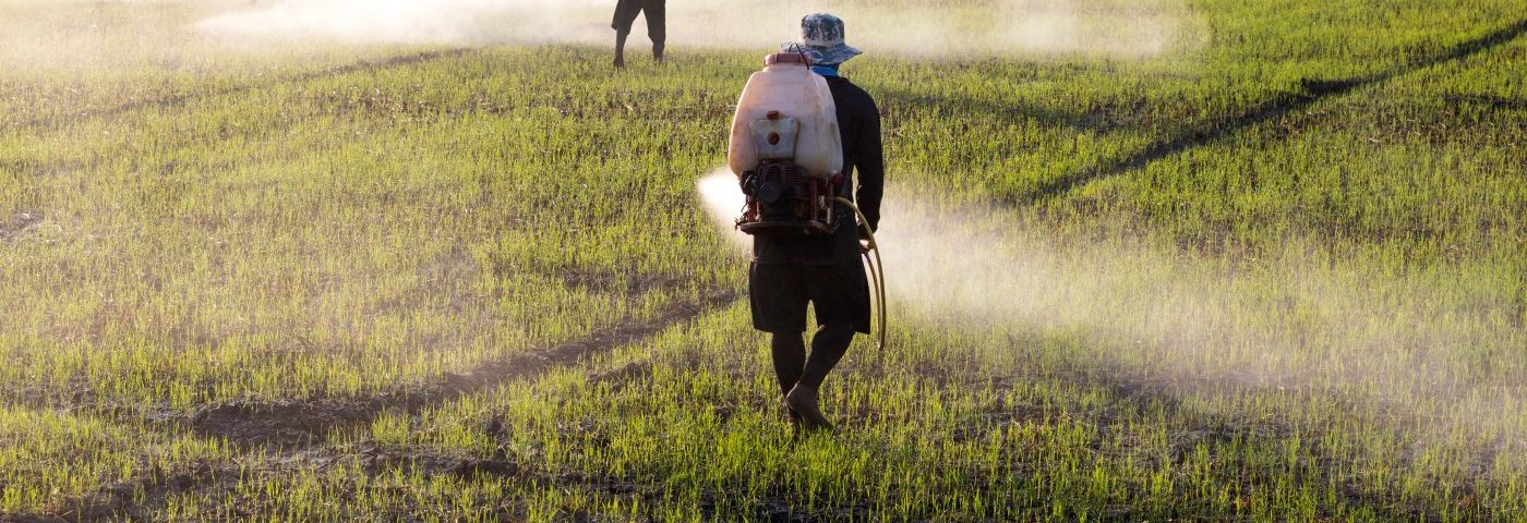 Exposure to Glyphosate in Herbicides Increases Risk of Non-Hodgkin's Lymphoma, Study Says